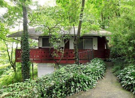 Blue Ridge Parkway Cabin Rentals