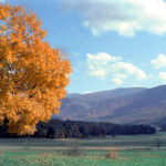 Cades Cove in Autumn