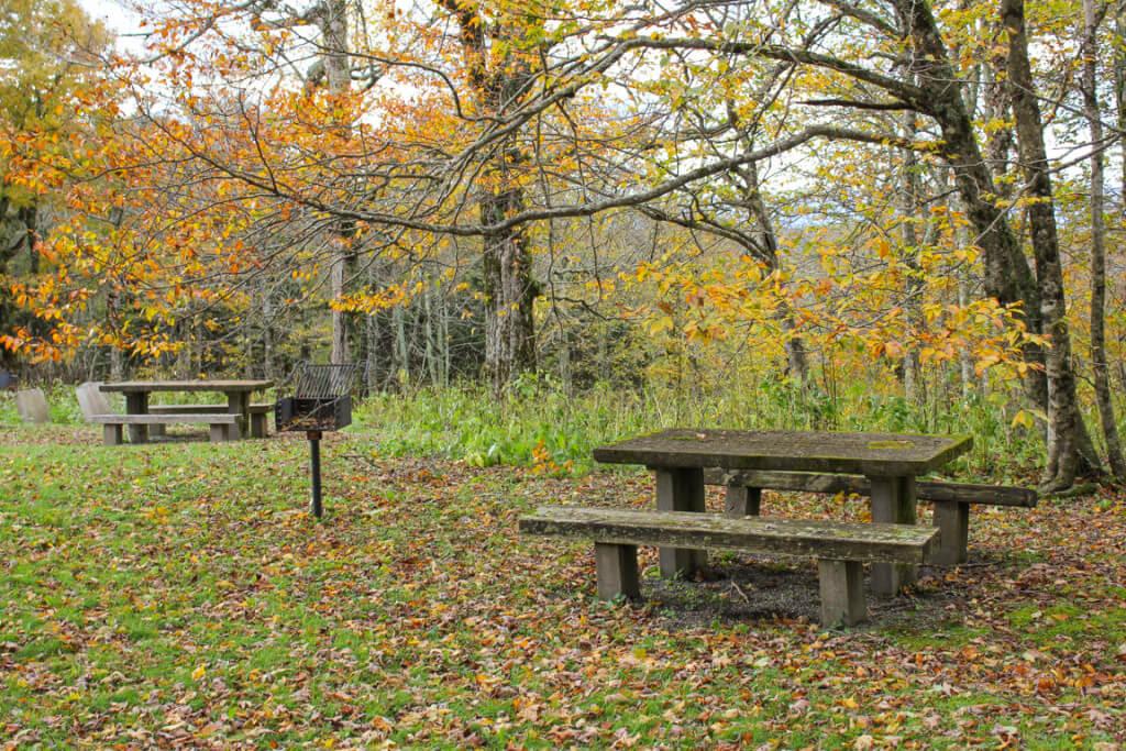 Craggy Gardens Picnic Area