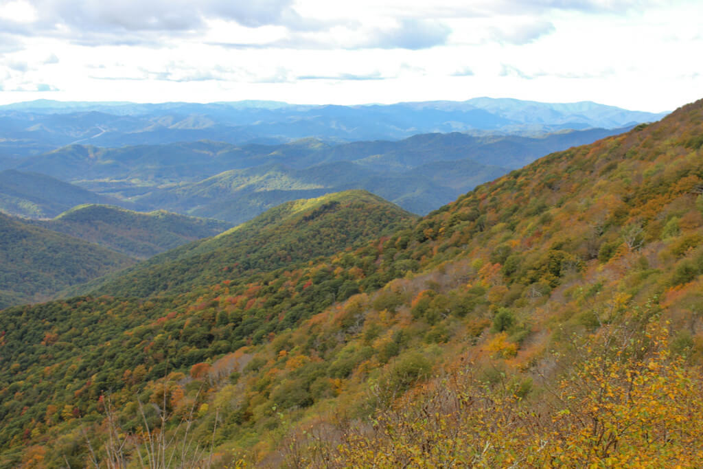 View from the Craggy Gardens Visitor Center