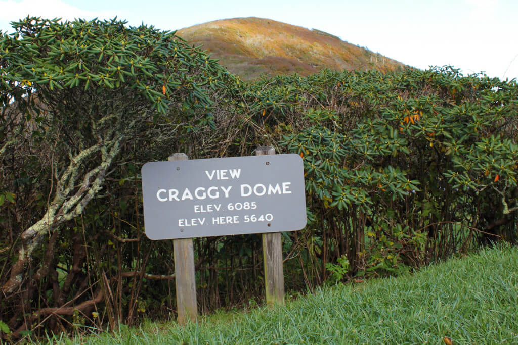 Craggy Dome Overlook