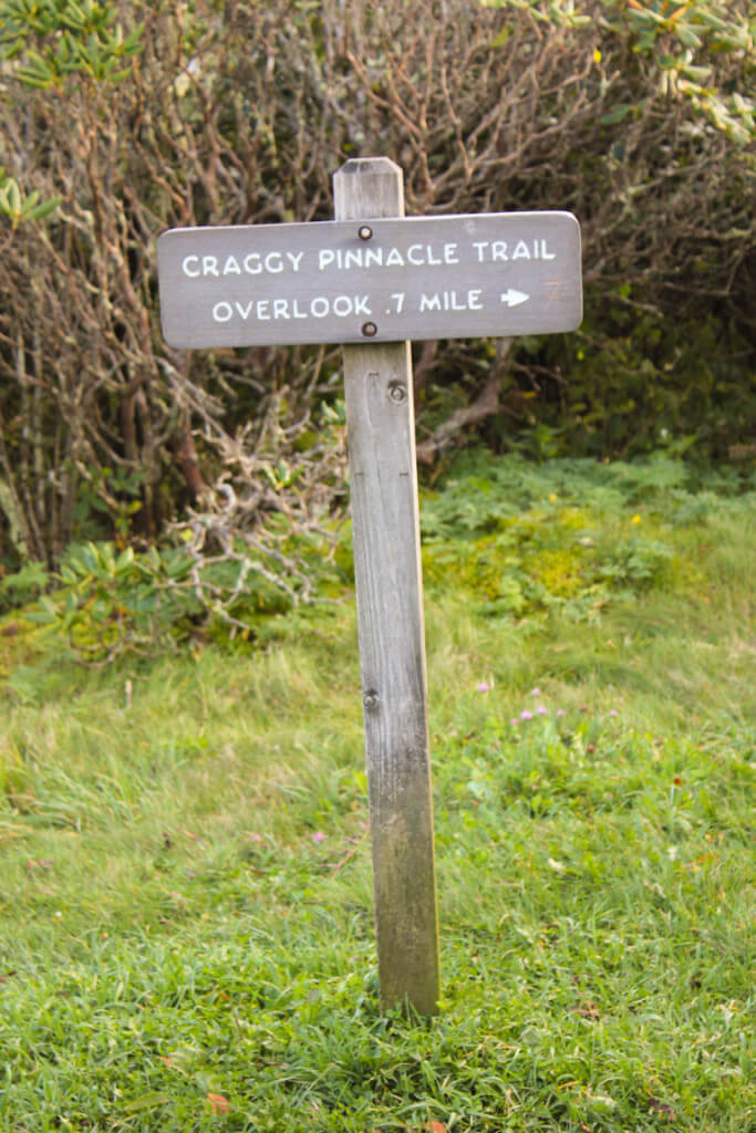 Craggy Pinnacle Trail Sign