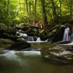 Falls in Pisgah Forest