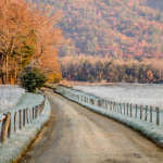 Gravel Road in Frost and Fall