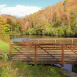 The trail begins on this bridge over Sims Pond. From Sims Pond Overlook, Milepost 295.9, you can walk around either side of the fence and down a short hill to reach this bridge.