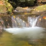 At several points along the trail, there are small cascades in Sims Creek.