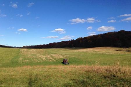 Fiesole Farm